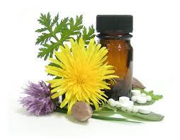 vereniging voor homeopathie